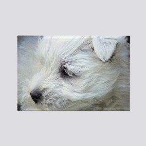 Westie Rectangle Magnet