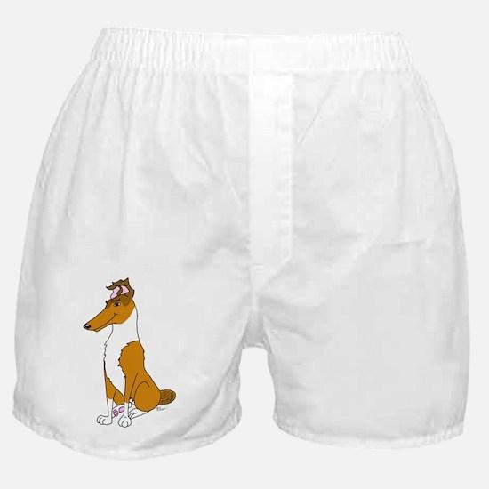 Smooth Sable Collie Boxer Shorts