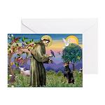 St. Francis Dobie Greeting Card