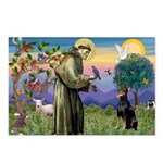 St. Francis Dobie Postcards (Package of 8)