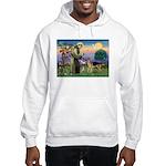 St Francis / G Shep Hooded Sweatshirt