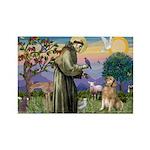 St Francis Golden Rectangle Magnet