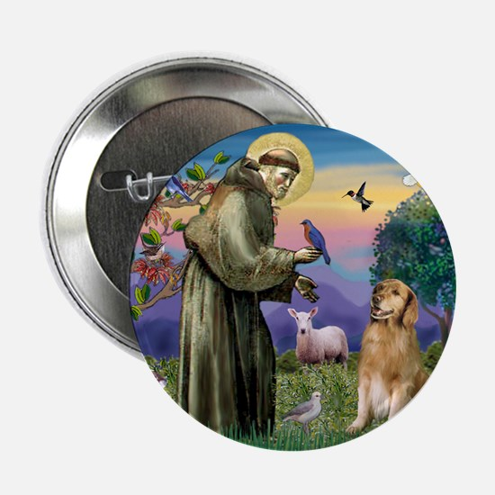 St Francis Golden Button