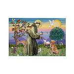 Saint Francis' Golden Rectangle Magnet