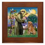 Saint Francis' Golden Framed Tile