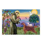 St. Fran./ Irish Setter Postcards (Package of 8)