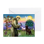St Francis Chocolate Lab Greeting Card