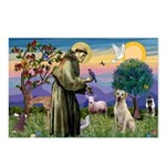 St Francis/Yellow Lab Postcards (Package of 8)