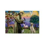 St Francis/Yellow Lab Rectangle Magnet (10 pack)