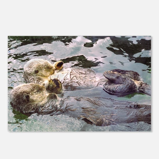 Sea Otter Love Postcards (Package of 8)