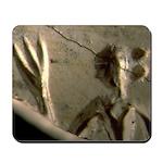 Seal Fragment Mousepad