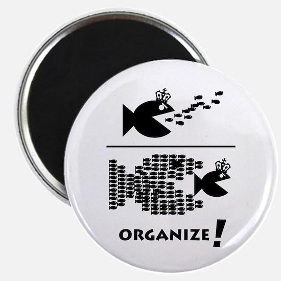 Organize Fish Magnet