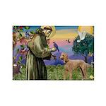 St Francis / Std Poodle(a) Rectangle Magnet