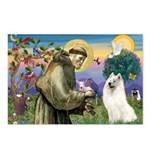 St Francis & Samoyed Postcards (Package of 8)