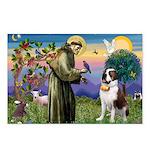 St. Francis/ St. Bernard Postcards (Package of 8)