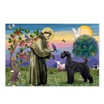 St. Francis & Giant Schnauzer Postcards (Package o