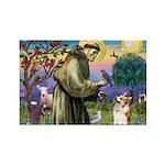 St Francis /Welsh Corgi (p) Rectangle Magnet (10 p