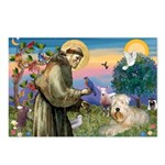 St Francis & Wheaten Postcards (Package of 8)