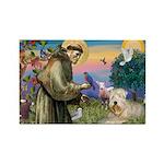 St Francis & Wheaten Rectangle Magnet (10 pack)
