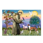 St Francis / Whippet Postcards (Package of 8)