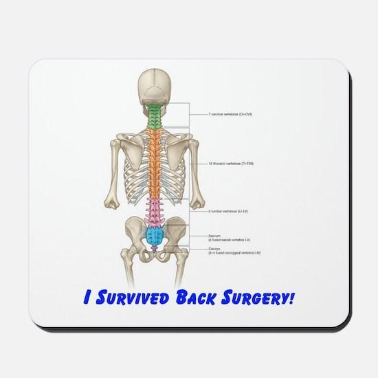 I Survived Back Surgery! Mousepad