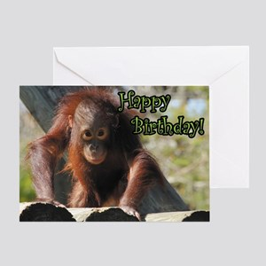 Cute monkey greeting cards cafepress happy birthday orangutan greeting card m4hsunfo