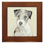Russell Terrier (Rough) Framed Tile