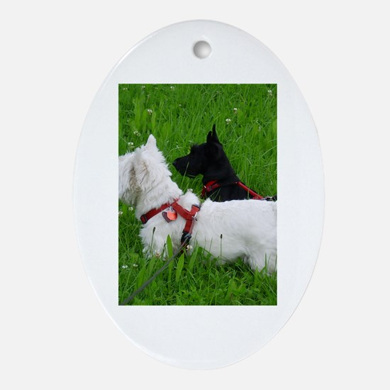 Westie and Scottie Oval Ornament