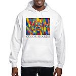 Color Shards Hooded Sweatshirt