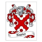 Napier Family Crest Small Poster