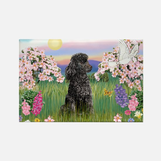 Blossoms/Poodle (miniature #2) Rectangle Magnet
