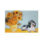 Sunflowers/PBGV Rectangle Magnet (10 pack)
