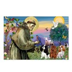 St Francis/Cavalier Trio Postcards (Package of 8)