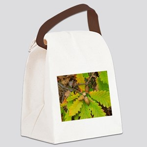 From little things big things gro Canvas Lunch Bag