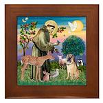 St Francis/Shar Pei #5 Framed Tile