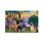 St Francis/Shar Pei #5 Rectangle Magnet (10 pack)
