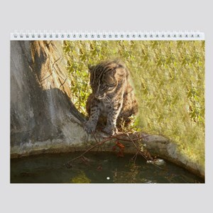 Fishing Cat Wall Calendar