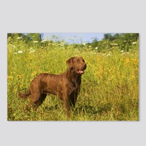 CHESSIE Postcards (Package of 8)