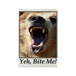 Yeh, Bite Me Rectangle Magnet (100 pack)