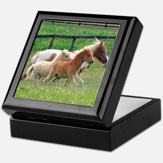 Three Mini Horses Running Keepsake Box