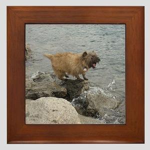 Cairn Terrier Pup Framed Tile
