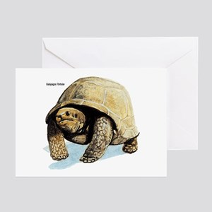 Galapagos Tortoise Greeting Cards (Pk of 10)
