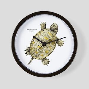 Diamondback Terrapin Wall Clock