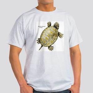 Diamondback Terrapin (Front) Ash Grey T-Shirt