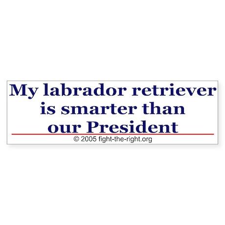 My labrador retriever is smarter (bumper sticker)