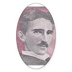 Tesla-1 Oval Sticker