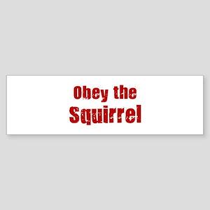 Obey the Squirrel Bumper Sticker