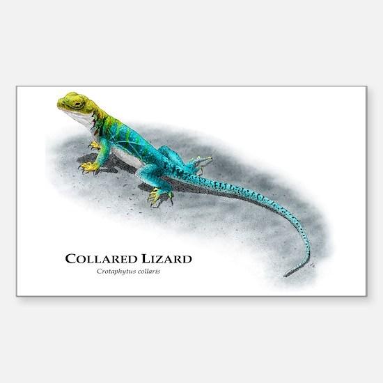 Collared Lizard Rectangle Decal