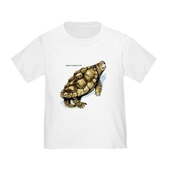Alligator Snapping Turtle (Front) T