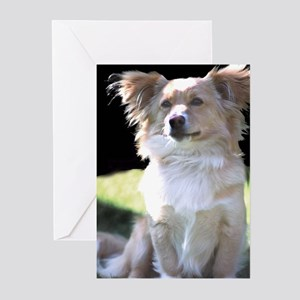Proud Pup Greeting Cards (Pk of 10)